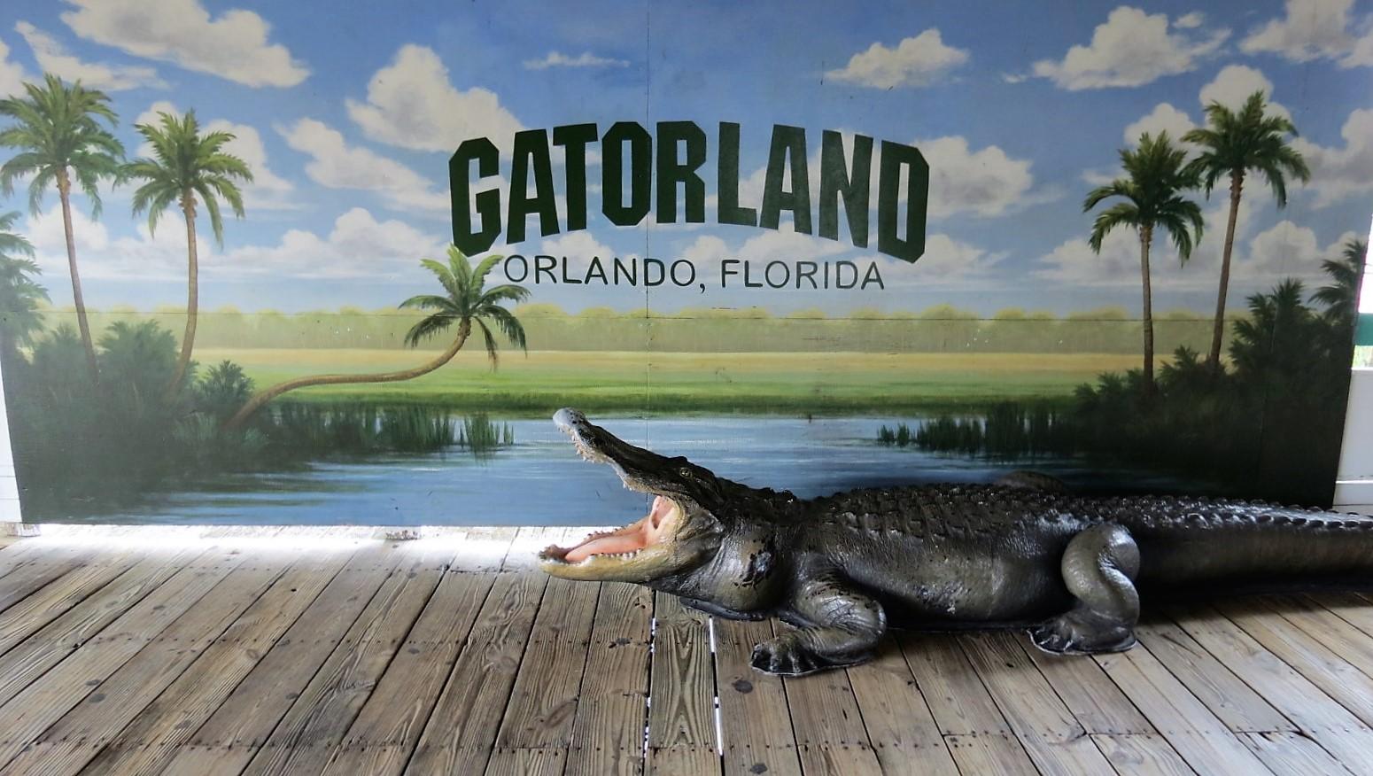 Picture of Gatorland Orlando, FL\
